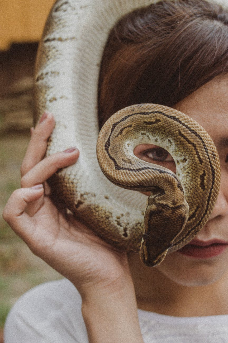 woman holding brown snake