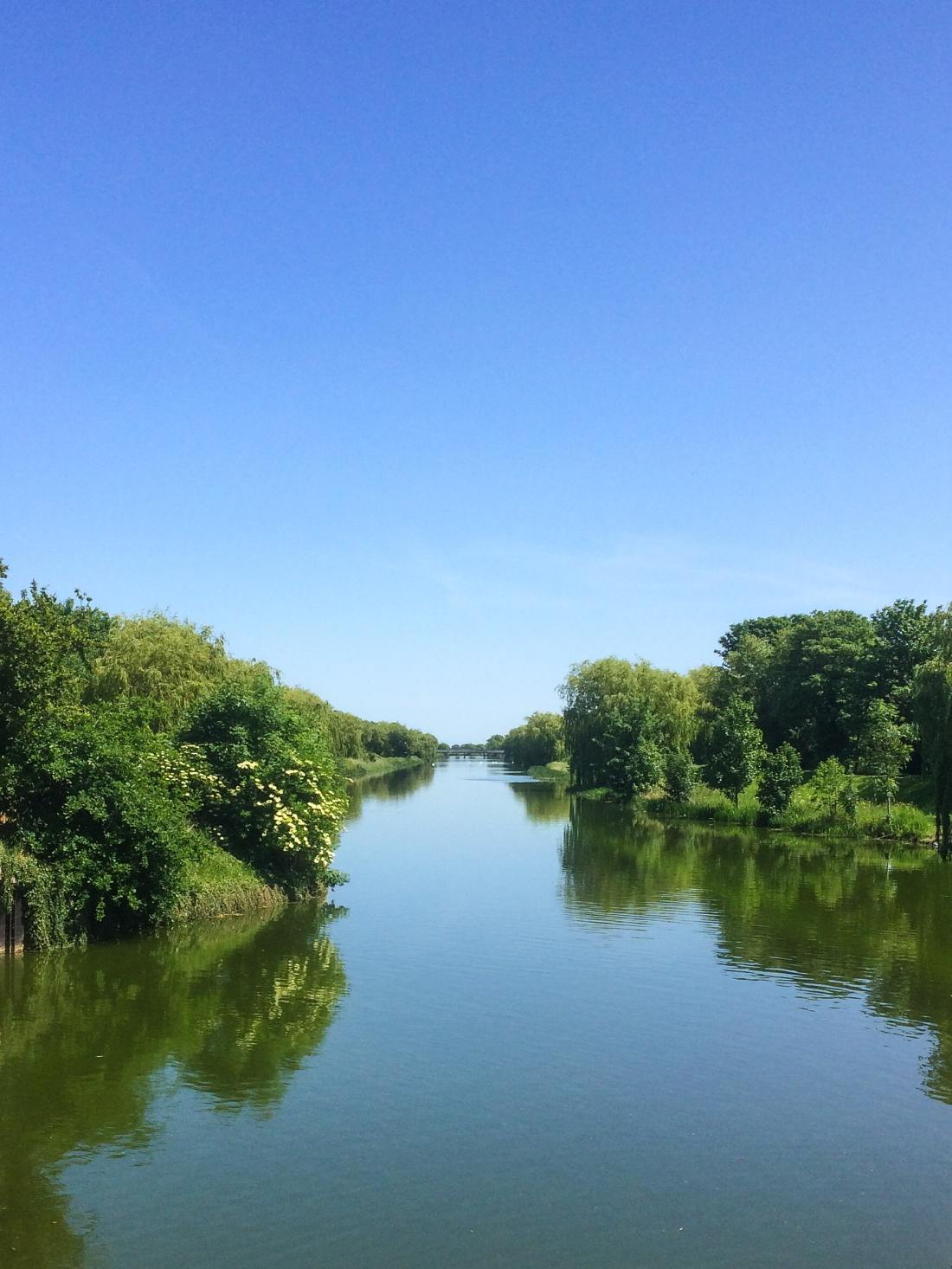 water-trees-green-blue-sky-4507089